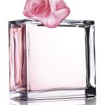 Luxusní vůně 2013 – naše tipy